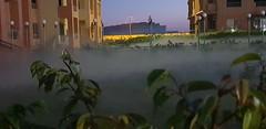 Mist At Dusk (Tammy Lynn Perkins) Tags: scary night yard fog mist building
