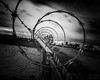 Day 131 | The Never Ending Story (JL2.8) Tags: meridian idaho unitedstates us barbed wire canon 6dmk2 project365 project photochallenge