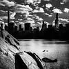 Tick, Trick & Track (m_laRs_k) Tags: noir blackandwhite centralpark usa skyline ducks ticktricktrack newyork