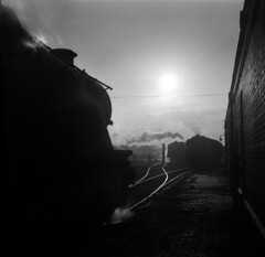 Into the sun (ralph.ward15) Tags: steam heatonmersey 9f black5 shed