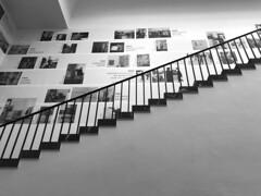 staircase (Rosmarie Voegtli) Tags: hausderkunst hdk münchen munich art kunst architektur architekture staircaise diagonal blackandwhite blackwhite