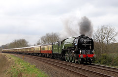 60163 Tornado hammers up Gomshall bank (Andrew Edkins) Tags: a1class lner peppercorn 60163 tornado gomshall vsoe mainlinesteam incline surrey england uksteam travel diningtrain geotagged canon light april 2018 spring pullman belmondvsoe pacific 462 passenger trip
