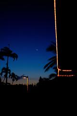 """Revers Moon""  :crescent_moon: (kyopé) Tags: reunion reunionisland réunion moon lune night nuit ile palmier palm blue light nightcall silhouette fuji fujifilm fujixseries fujixt10 35mm 14"