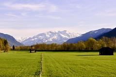 bei Zell a See / Austria (ArminBe) Tags: kitzsteinhorn alpenschnee see am zell frühling wiese weide
