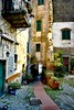 Old walls in Liguria. (paaddor) Tags: lifestyle beautiful travelattraction awesome photography traveling travelphotography adventures lovely photo happy nikond3400 cute explore travellingthroughtheworld wonderful cool travel mediterranean liguria