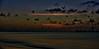 Misty Morning Weather (beachpeepsrus) Tags: beach birds beachfront blackskimmers bay alamitosbay california clouds color longbeachcalifornia longbeachgranprix light