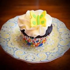Butterfly Chocolate  Cupcake (ladybugdiscovery) Tags: butterfly chocolate cupcake treat sweet