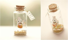 You are going to be the most beautiful 1,Tiny message in a bottle,Miniatures,Personalised,Valentine Card,Gift for her/him,Girlfriend gift, birthday card, message card and miniatures card ideas (charles fukuyama) Tags: rabbitdoll rabbit bunny handmadecard custom unique funnycard greetingscard holidaycard paper homedecor deskdecor cute animals pet bottle lovecard art kikuike