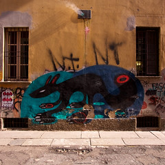 IMGP9097 Murales a Milano (Claudio e Lucia Images around the world) Tags: milano murale murales graffito graffiti coloredwall walls windows mouse mice rat ghost pentax pentaxk3ii sigma sigma1020 cat catonwall