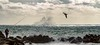Ça mord... (J&S.) Tags: cinqueterre italie manarola mer pêcheur vague paysage nuage