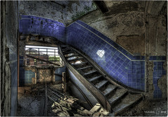 We've lost detail in the photo but in the blow-up you can see it's blue ceramic tile. (Yamabxl) Tags: belgique hdr decay escaliers panorama urbex abandoned abbandonato charbonnage hp escalier stairs staircase spooky tiles bleu blue creepy derelict dereliction forgotten forbidden ghost gloomy highdynamicrange hidden lostplaces prohibed prohibé urbanexploration urbexhdr verfall verlassen verlaten