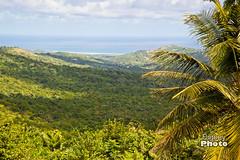 Barbados - 2017-7 (@Digbeyphoto) Tags: barbados caribbean bridgetown saintmichael bb