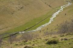 CressbrookDale (Tony Tooth) Tags: nikon d7100 sigma 1750mm stream brook dale valley landscape countryside cressbrookdale litton derbyshire peakdistrict england