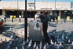 Feeding the Seagulls (@fotodudenz) Tags: olympus mju ii stylus epic compact camera kodak gold 400 glenelg adelaide 2018 seagulls film