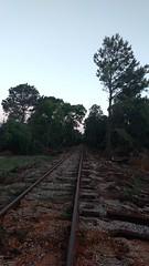 IMG_20180415_195929198 (LnCS) Tags: railroad construction rebuild capitol metro capmetro texas new braunfels weekend trip giddings line rehab rehabilitation