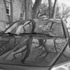 untitled (kaumpphoto) Tags: rolleiflex tlr 120 bw monochrome car tree brick window branch reflection windshieldwiper windshield shadow bark hood gless auto