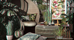 Birds of Paradise (B. Lockhearst) Tags: vespertine dust bunny revival loft fameshed collabor88 c88 aria hive tropical plants bamboo fancy decor books
