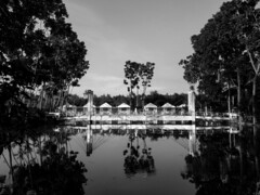 Architecture (Shahrear94) Tags: xiaomi black white landscape contrast bnw reflection water picnic tree highlighted bangladesh gazipur architecture sky life figure cellphone flicker website only picture art