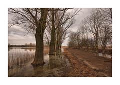 IMG_9758 TK (cees van gastel) Tags: ceesvangastel canoneos550d sigma1020mm landschap landscape nature natuur water skies luchten trees bomen nederland netherlands waardenvanloevestein gelderland wolken clouds