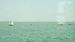 approachingvenicebyspeedingtrain (saragallery) Tags: venice venezia sail boats barcaavela train paesaggio lagunadivenezia venetian lagoon water sailboat window speedingtrain àgreenàvverde