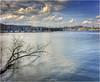 Luzern Bootshafen (Hanspeter Ryser) Tags: vierwaldstättersee luzern lucerne landschaft landscap see boot bootshafen switzerland schweiz swiss ast wolken wolkenstimmung stadt water