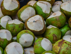 Coconut fruits for sale (phuong.sg@gmail.com) Tags: asia asian beverage close closeup coconut cook cooking delicious diet drink eat eatable flavor food fresh fruit fruity garden good green half healthy juice juicy macro market nature nuts pattern ripe sale sell shell shelled shop summer sweet tasty texture thai thailand traditional tropic tropical vegetable vegetarian vitamin water