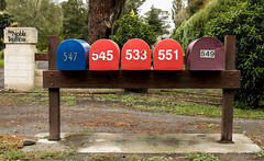 20180322_5949_7D2-24 Great Numerical Order! (081/365) (johnstewartnz) Tags: onephotoaday oneaday onephotoaday2018 365project project365 canon canonapsc apsc eos 7d2 7dmarkii 7d canon7dmarkii canoneos7dmkii canoneos7dmarkii 2470 2470mm ef2470mmf4l letterbox red 081365 day081 day81 truffles thenobletruffiere