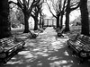 In the grounds of Nottingham Castle (Andy Sut) Tags: parkbench treeshadow avenue england englishhistory nottinghamshire history medieval formalgarden bw monochrome blackandwhite path trees nottinghamcastle nottingham grounds benches bandstand