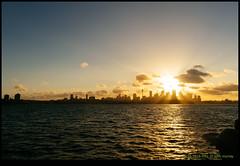 180128-5916-XM1.JPG (hopeless128) Tags: 2018 ferry australia sydney sunset sky clouds mosman newsouthwales au