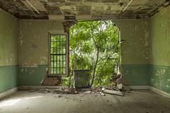 escape plan. (stevenbley) Tags: abandoned decay urbex urbanexploration newyork ny hospital psychiatriccenter psychiatric canon5dmarkii rot rust peelingpaint guerillahistorian asylum graffiti urbandecay