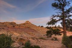 Morning glow at Soap Creek (Chief Bwana) Tags: az arizona soapcreek navajosandstone sunrise vermilioncliffs pariaplateau psa104 chiefbwana
