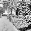 Roadside Fence (w.mekwi photography [here & there]) Tags: snow fence hff square 1x1 landscape scotland uk white trees