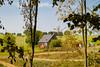 Schmiedebach Vorwerk (zimmermann8821) Tags: architektur berge gebäude grundstück haus landwirtschaft siedlung baum feldweg laubbaum naturlandschaft wiese zweig ddr deutschland