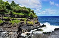 From the Kuloa Point Trail at Kipahulu Area : 'Valley Isle Excursions'– the incredible Maui tour to Hana…and Haleakalā. (biswarupsarkar72) Tags: hawaii pacificocean pacificislands pacificseabeaches maui usa tourisminusa travellinginusa sea seabeaches wailea grandwailea nikon nikond7000 samsung samsungmobilephotography samsungmobileon7pictures nikonphotography islandsinpacificocean passionoftravellinginusa photojournalism biswarupsarkar biswarupsphotography biswarupsphotographicjourney islandsofhawaii toursinhawaii tourisminhawaii charmsofhawaii natureofhawaii travellinginhawaii experienceinhawaii pacific pacificbeauty enchantinghawaii