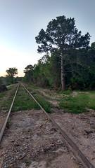IMG_20180415_200525312_HDR (LnCS) Tags: railroad construction rebuild capitol metro capmetro texas new braunfels weekend trip giddings line rehab rehabilitation