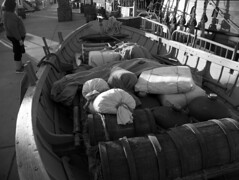 trade goods DSCF3690Green (Merkwürdiglieben) Tags: san diego california