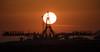 Expedition 55 Soyuz Rollout (NHQ201803190008)(explored) (NASA HQ PHOTO) Tags: kazakhstan expedition55 baikonur baikonurcosmodrome roscosmos kaz expedition55preflight nasa joelkowsky explored