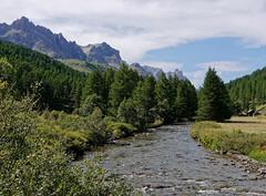 Vallée de la Clarée (Livith Muse) Tags: montagne arbre sapin rivière eau névache provencealpescôtedazur france fra panasonic lumix gx7 alpes lumixg20f17ii panasonic20mmf17ii