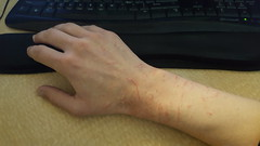 20180321_110743 (number657) Tags: cat scratch scratches arm hand wrestling playing
