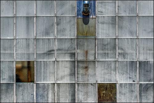 Greenhouse Windows (Biltmore Estate, Asheville NC)