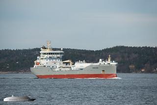 Ternfjord