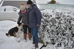 DSC_8023 (seustace2003) Tags: baile átha cliath ireland irlanda ierland irlande dublino dublin éire glencullen gleann cuilinn st patricks day zima winter sneachta sneg snijeg neve neige inverno hiver geimhreadh