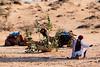 A man with camels in Thar desert near Jaisalmer, Rajasthan, India (CamelKW) Tags: 2018 india rajasthan aman camels thardesert jaisalmer