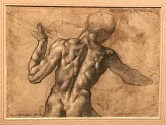 Michelangelo_Study of the Torso of a Male Nude Seen from the Back (Hiero_C) Tags: renaissance newyork metropolitanmuseum drawing
