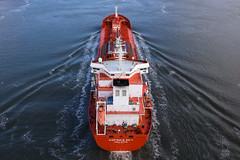 Adfines Sky - Forth Road Bridge - 01-04-18 (MarkP51) Tags: adfinessky forthroadbridge firthofforth scotland tanker ship boat vessel water nikon d7200 sunshine sunny maritimephotography