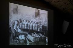 Séjour Causses et Cévennes LCF (VirgGovignon) Tags: lycée comte de foix education svt roquefort brebis templiers hospitaliers occitanie ferme lait vautours lpo ste eulalie cernon forgeron papillon fujifilm