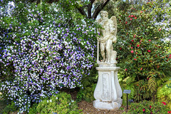 Beware of a Scantily Clad Man with an Hourglass and a Scythe (Non Paratus) Tags: statue huntingtongardens brunfelsiapauciflora flowers camellia