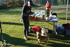 untitled-44.jpg (@Palleus) Tags: dogs nanaimo rdn dog race raceseries racetiming rebeltiming run runners running traildog trailrace trailrun vancouverisland viendurance westwood westwoodlake