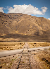 Crossing. (yeahwotever) Tags: cusco peru puno train railway railroad crossing