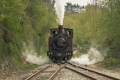 A toda máquina (Txaro Franco) Tags: tren azpeitia ferrocarril vías trenbidea